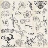 Elementos caligráficos del diseño floral Fotos de archivo