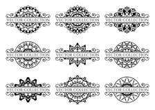 Elementos caligráficos do projeto Fotografia de Stock Royalty Free