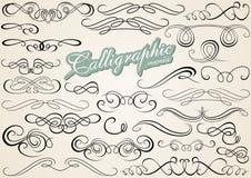 Elementos caligráficos do projeto Imagens de Stock