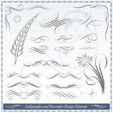 Elementos caligráficos y decorativos del diseño Fotografía de archivo libre de regalías