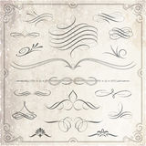 Elementos caligráficos y decorativos del diseño Fotografía de archivo