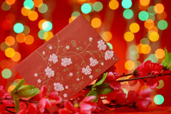Elementos chinos del Año Nuevo Fotografía de archivo libre de regalías