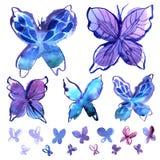 Elementos da borboleta da aquarela no azul Fotografia de Stock