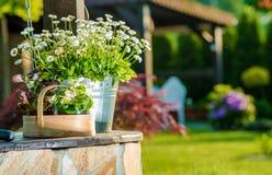 Elementos da decoração do jardim Imagens de Stock Royalty Free