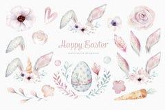 Elementos da Páscoa da aquarela, flor da mola, ramo, ovos da páscoa, ovos coloridos, coelho e orelhas dos bannies Coelho ilustração do vetor