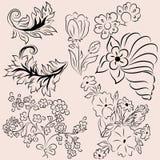 Elementos das flores e dos outros objetos Fotos de Stock Royalty Free
