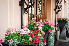 Elementos de construção bonitos do projeto Decoração da flor na rua imagem de stock