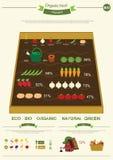Elementos de Infographic de la granja de Eco. Imagen de archivo libre de regalías