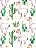 Elementos de la acuarela para su diseño con las plantas, las flores y el lama del cactus ilustración del vector