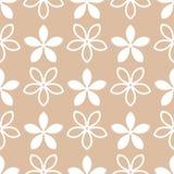 Elementos de la flor para los papeles pintados Modelo inconsútil blanco y marrón Imagen de archivo libre de regalías