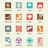 Elementos de la radiografía libre illustration