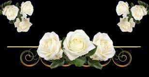Elementos de Rose. Foto de archivo libre de regalías