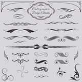 Elementos decorativos caligráficos del diseño stock de ilustración