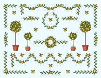 Elementos decorativos naturais com fruto e folhas na cor ilustração royalty free