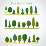 Elementos del bosque Fotografía de archivo