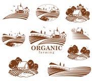 Elementos del diseño de la agricultura biológica stock de ilustración