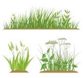 Elementos del diseño de la hierba libre illustration