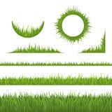 Elementos del diseño de la hierba Foto de archivo