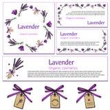 Elementos del diseño de la lavanda Fotografía de archivo libre de regalías