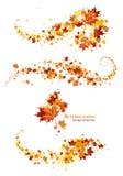 Elementos del diseño de las hojas de otoño Fotografía de archivo
