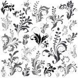 Elementos del diseño de Swirly Foto de archivo libre de regalías