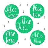Elementos del diseño de Vera del áloe Colección de sellos Letras de la mano del vector Fotografía de archivo libre de regalías