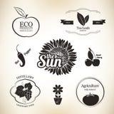 Elementos del diseño del alimento Fotos de archivo libres de regalías