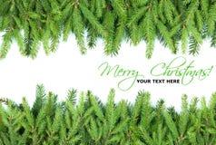 Elementos del diseño del marco del árbol de abeto de la Navidad Imágenes de archivo libres de regalías