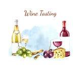 Elementos del diseño del vino de la acuarela Foto de archivo libre de regalías