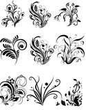 Elementos del diseño floral Fotos de archivo