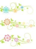 Elementos del diseño floral. Fotografía de archivo
