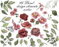 Elementos del diseño floral Ramo del resorte de flores libre illustration