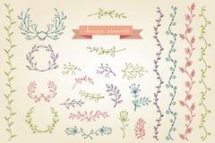 Elementos del diseño gráfico Colección floral del marco libre illustration