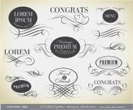 Elementos del diseño y decoración caligráficos de la página Imagen de archivo libre de regalías