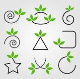 Elementos del diseño de las hojas del verde Imagenes de archivo