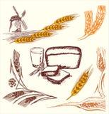 Elementos del trigo stock de ilustración
