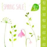 Elementos del verde del vector de la venta de la primavera Pintado a mano Imagen de archivo libre de regalías