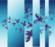 Elementos detalhados da borboleta Imagens de Stock