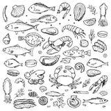 Elementos dibujados mano del garabato de los mariscos Fotografía de archivo libre de regalías