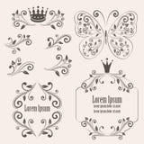 Elementos do design floral Foto de Stock