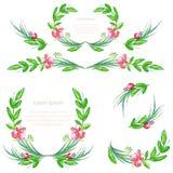 Elementos do design floral da aquarela com folhas e bagas Escovas, beiras, grinalda, festão Vetor Imagem de Stock Royalty Free