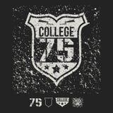 Elementos do emblema e do projeto do esporte da faculdade Foto de Stock Royalty Free