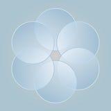 Elementos do gráfico do projeto dos círculos Imagens de Stock