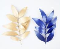 Elementos do projeto da folha do azul e de ouro imagem de stock