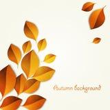Elementos do projeto das folhas de outono Ilustração Stock