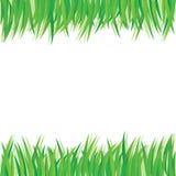 Elementos do projeto das folhas do verde Foto de Stock