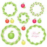 Elementos do projeto do círculo com maçãs e folhas ilustração royalty free