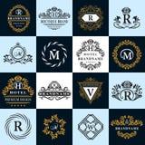 Elementos do projeto do monograma, molde gracioso Linha elegante caligráfica projeto do logotipo da arte ilustração stock