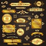 Elementos do projeto do vintage dourados Fotos de Stock Royalty Free
