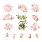Elementos do projeto para o ramalhete floral Imagem de Stock Royalty Free